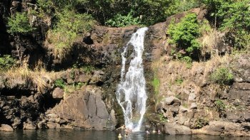 Full-Day Circle Island Tour: Nu'uanau Pali, North Shore & Waimea Valley