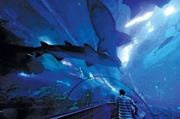 Aquaria KLCC Admission