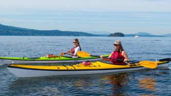 Guided Kayak Tour of Brentwood Bay