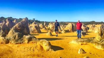 Pinnacles Day Trip Including Yanchep, Lacelin & Scarborough