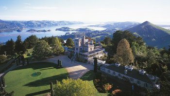 Shore Excursion: Full-Day Royal Peninsula Tour to Dunedin & Otago Peninsula