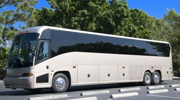 Shared Coach - Eindhoven Airport to Amsterdam or Utrecht City Centers