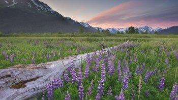 Turnagain Arm Landscape Photography Tour