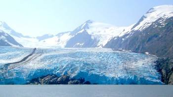 Turnagain Arm & Portage Valley with Glacier Cruise & Wildlife Center