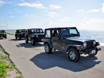 Cozumel Jeep Discovery Tour with Snorkeling & Dolphin Moment