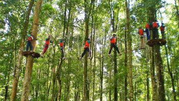 Bali Treetop Full-Day Adventure Tour