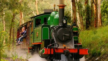 Small-Group Healesville Sanctuary Tour with Puffing Billy