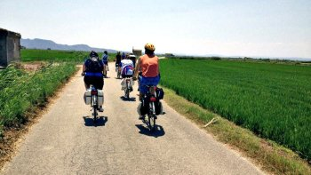 Albufera National Park Bike Tour with Lunch