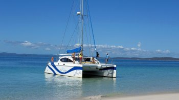 Half-Day Fraser Island & Hervey Bay Eco-Sailing Adventure