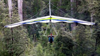 Eagle Hang Glider Experience at Tahune Airwalk