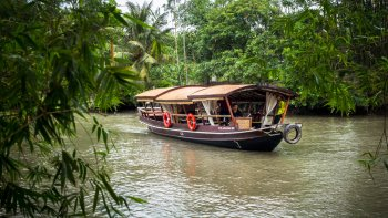Private Mekong Delta Excursion with Cái Bè Princess Cruise