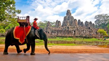 Full-Day Guided Angkor Bike Tour with Ta Prohm & Angkor Wat