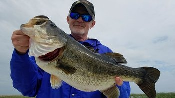 Fort Pierce Bass Fishing