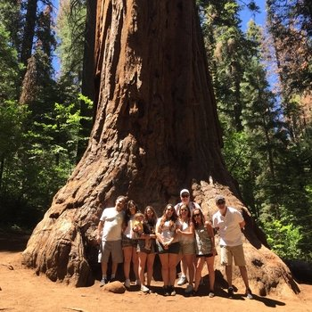 Private Giant Sequoia Jeep Tour & Hike