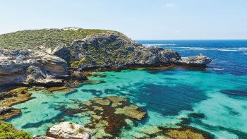 Rottnest Island Snorkeling & Eco Express Boat Ride Experience with Lunch