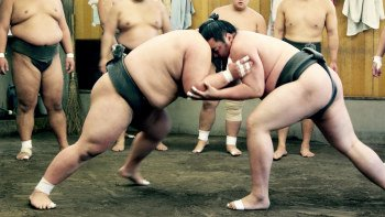 Sumo Practise Spectating at Sumo Stable