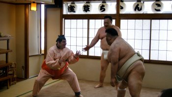 Sumo Demonstration & Chankonabe Hotpot Lunch