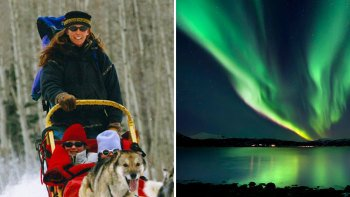 Evening Dog Sled Tour & Aurora Viewing with Dinner