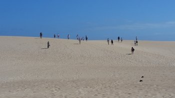 Small-Group Fuerteventura Sightseeing Tour