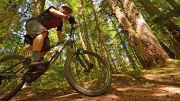 Guided Mountain Biking Lesson
