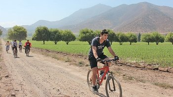 Santa Rita Winery Bike Tour