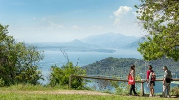 Half-Day Lake Garda Trek with Lunch