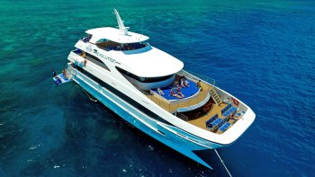 Full-Day Outer Reef Cruise & Snorkelling Tour