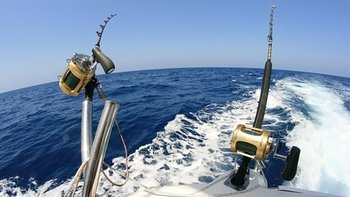 Small-Group Fishing Charter in El Arenal