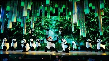 ,Kung Fu Show