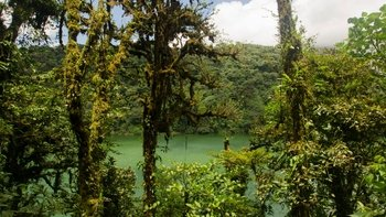 Half-Day Guided Safari Float on the Peñas Blancas River