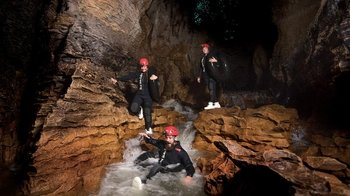Ruakuri Caves Black Water Rafting with Kiwi Bird Experience