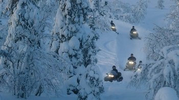 Northern Lights Nighttime Snowmobile Safari