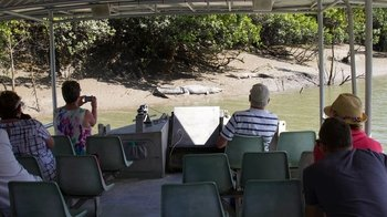 Whitsunday Crocodile Safari on Proserpine River with Lunch