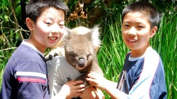 Tickets to Australia Zoo with Transfers