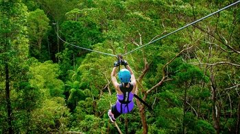 Admission to TreeTop Challenge Canyon Flyer Zip line Tour