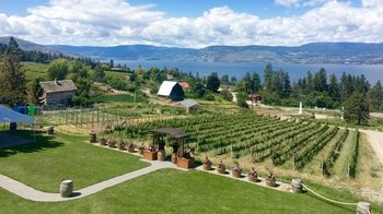 Okanagan Wineries Tour