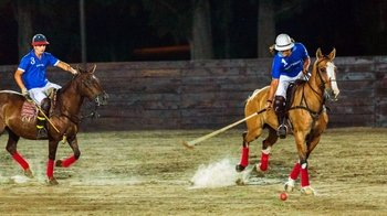 Polo Night Experience
