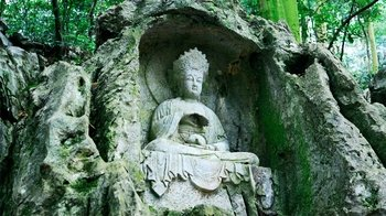 Private Day Tour to Lingyin Temple & Longjing Village