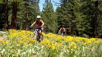 Guided Beginner Mountain Biking Trail Ride