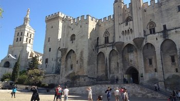 Private Shore Excursion to Avignon & Chateauneuf du Pape