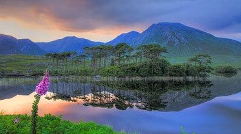 Best of Connemara Full-Day Tour from Galway