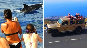 Majestic Madeira Jeep Tour & Dolphin-Watching Cruise with Pico do Arieiro