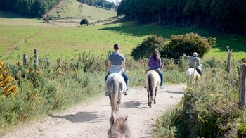 Guided Horseback Riding Tour with Lunch
