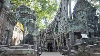 Private Half-Day Banteay Kdei & Ta Prohm Tour