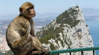 Private Gibraltar & Bolonia Tour