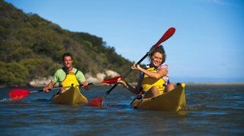 Guided Harriet River Kayak Tour