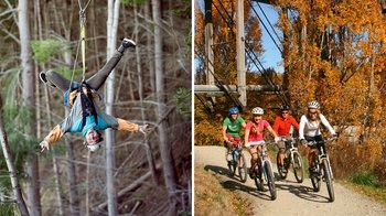 Full-Day Treetop Zipline & Scenic Cycling Tour
