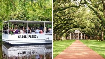 Swamp & Plantation Combination Tour