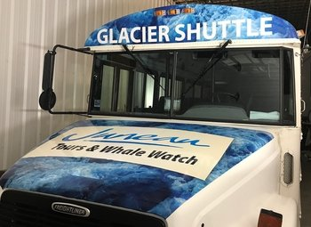 Shared Shuttle - Juneau to Mendenhall Glacier Park