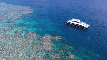 Great Barrier Reef Snorkel & Dive Cruise